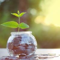 Refis para Micro e Pequenas Empresas (Simples Nacional)